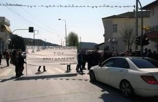 Διαμαρτυρία των κατοίκων του Αμυγδαλεώνα με ολιγόλεπτο αποκλεισμό του δρόμου (φωτογραφίες)