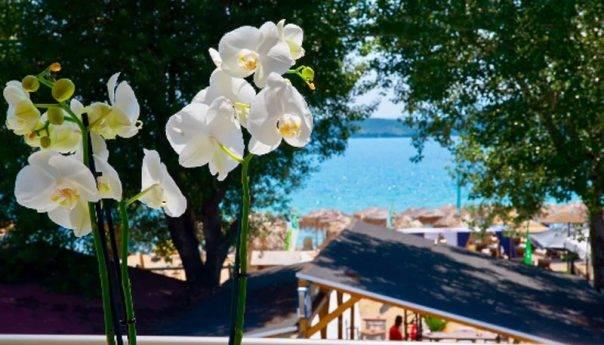 Airbnb: Η Νέα Πέραμος Καβάλας στους top ανερχόμενους προορισμούς οικογενειών παγκοσμίως !