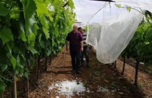 Στο Μυρτόφυτο ο Κώστας Μορφίδης: Οι ζημιές είναι τεράστιες!
