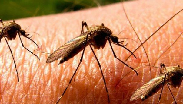 SOS: «Στερεύει» το αίμα λόγω του ιού του Δυτικού Νείλου - Σε «καραντίνα« 26 δήμοι της χώρας