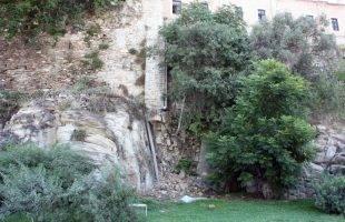 Επικίνδυνα δέντρα στο παράλιο τείχος