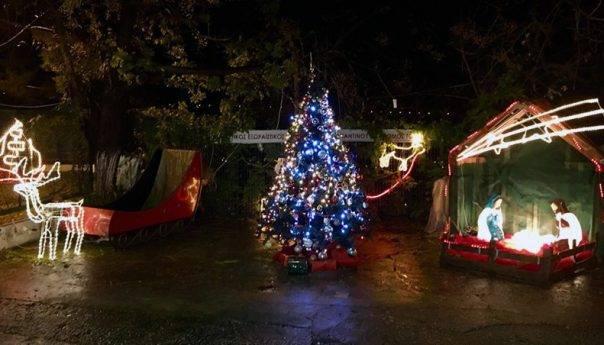 Στολισμός δέντρου στη συνοικία του Αγίου Κωνσταντίνου